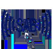 logotipo sab