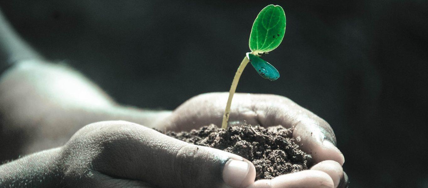 Tecnología RPA para crecer